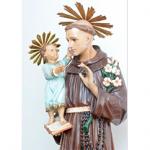 A Catedral de Santo Antônio informa a programação de sua  89ª Festa do Padroeiro