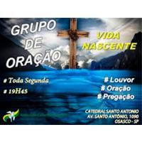 Grupo de Oração Vida Nascente - RCC