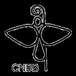 CNBB se posiciona em favor da vida