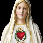 Monsenhor Claudemir preside Solenidade de Nossa Senhora de Fátima